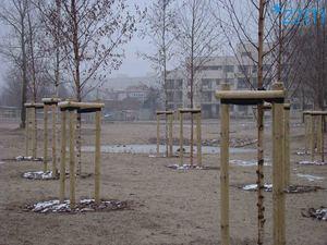pobierz zdjęcie parku Rataje 11 [300x225]