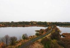 pobierz zdjęcie przedstawiające widok z wieży na terenie Glinianek - Szacht (link otworzy duże zdjęcie)
